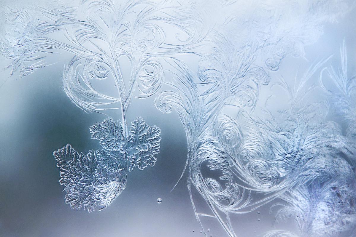 Мороз - nakip1