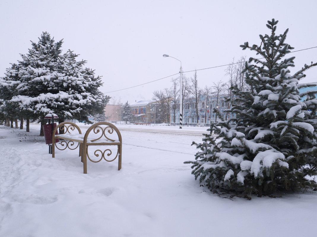 Ели в снегу - Сергей Махонин
