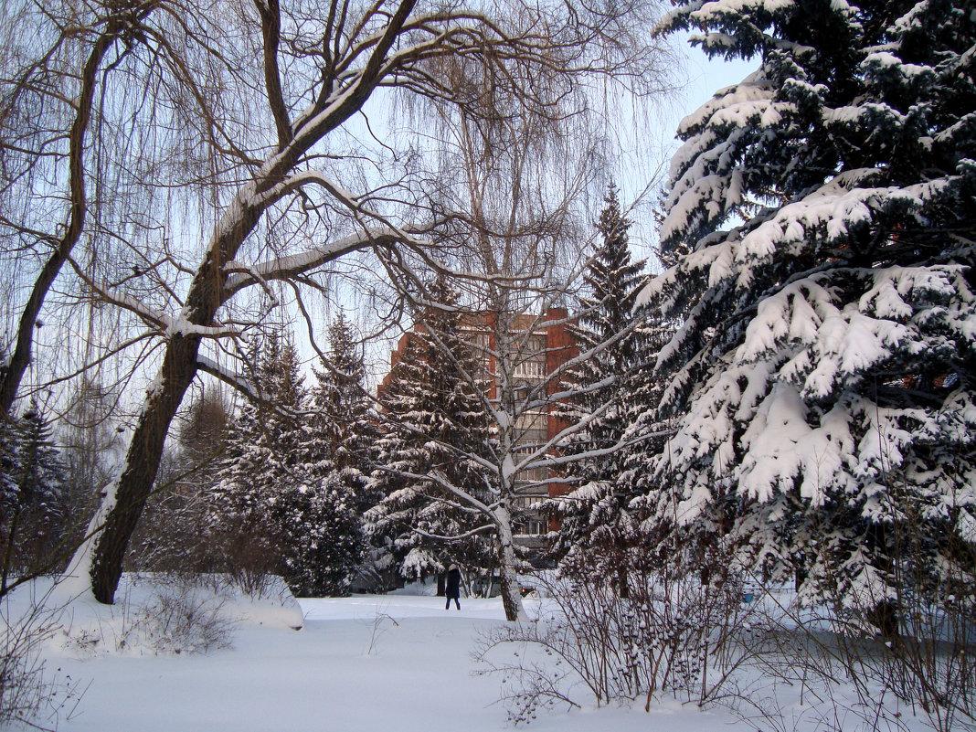 настоящая зима пришла... - Галина Филоросс