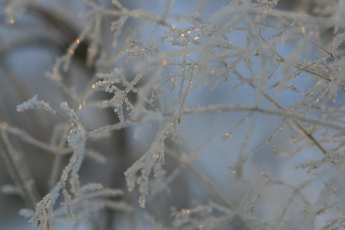 Зимние украшения... - юрий