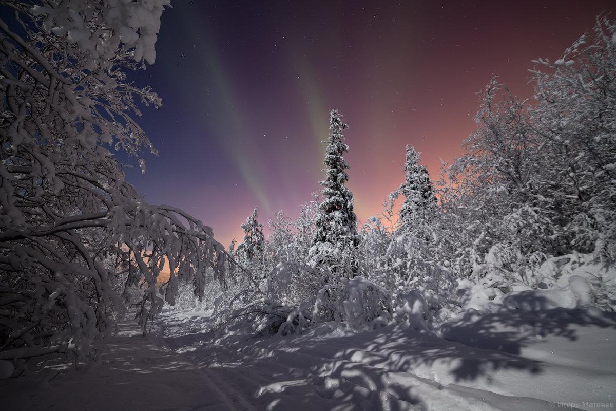 Морозная теплота - Игорь Матвеев