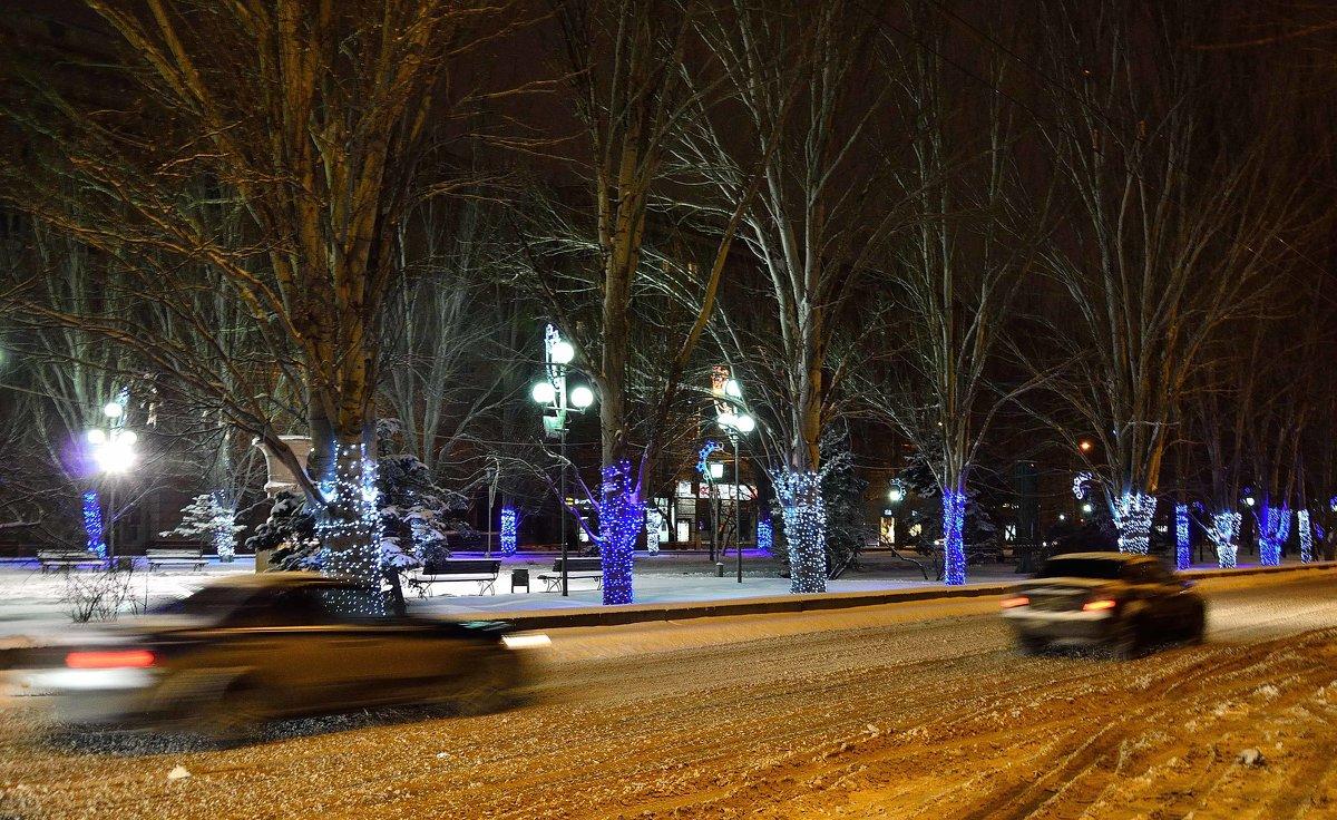 Стволы деревьев в Новогоднем оформлении - Александр
