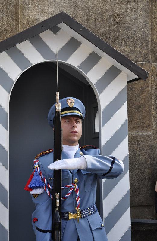 Портрет. Важный караульный у президентского дворца. - Юрий Воронов