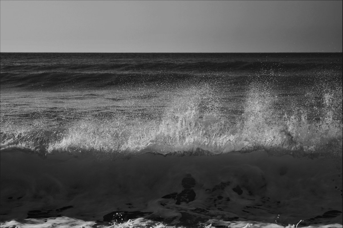 Океанское зево - Karolina