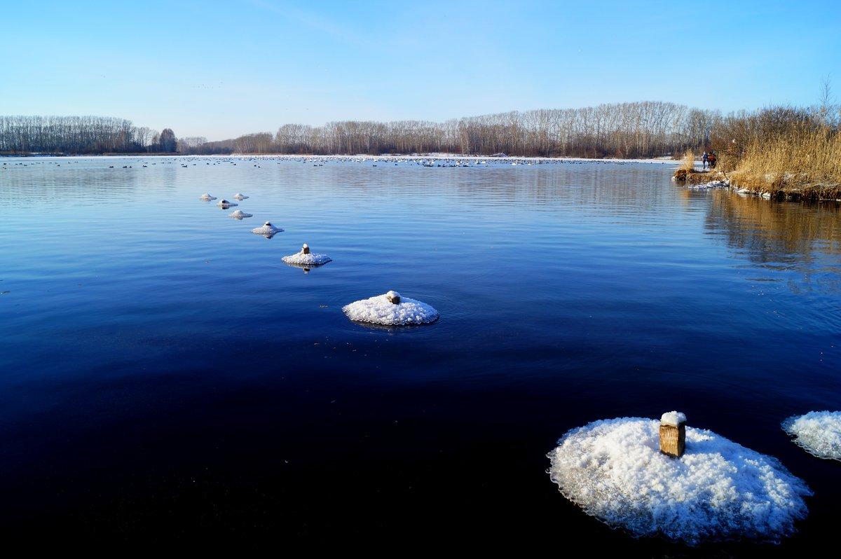 На озере - Кристина Воробьева
