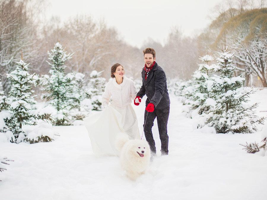Зимние свадьбы - самые красивые. - Анастасия Кочеткова