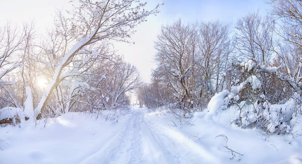 Зима во всей своей красе - Наталья Петрова