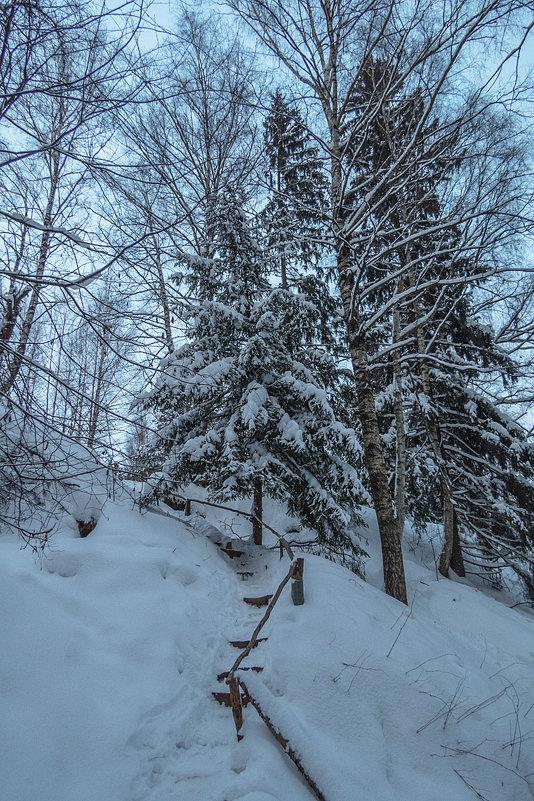 после снегопада - Сергей Цветков