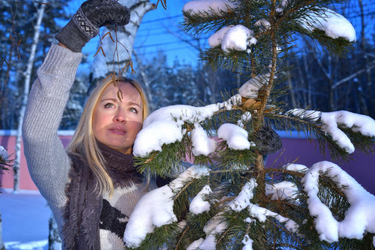 зима - Василий Алехин