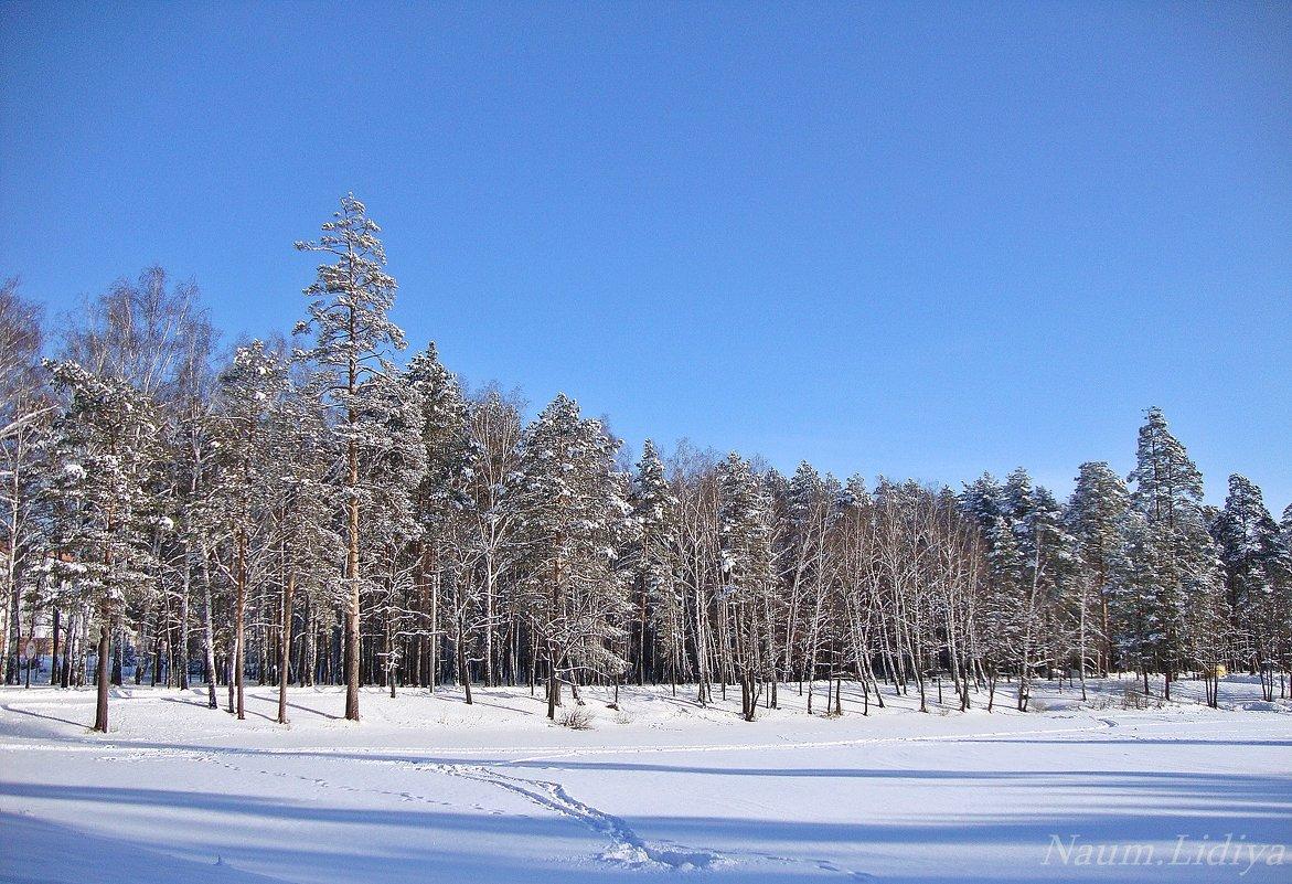 Зимние просторы - Лидия (naum.lidiya)