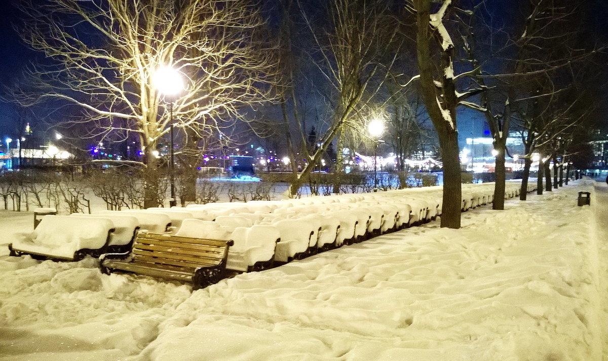 Все в зимней спячке, а я не могу заснуть... - Николай Дони