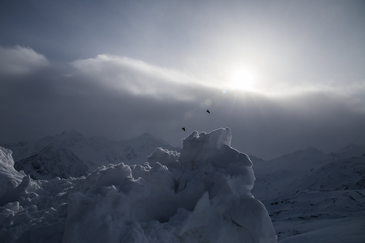 Птицы над снежными узорами горы Эльбрус. - Zifa Dimitrieva