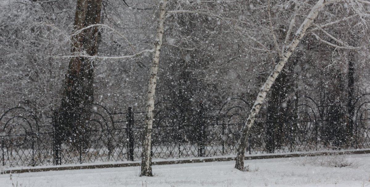 снег - Жанна