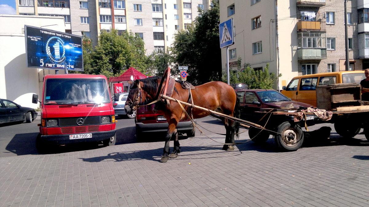 1 лошадиная сила- а везет как бус... - Александр Прокудин