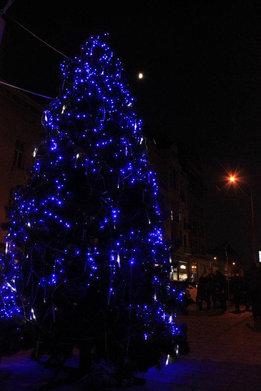 Дух Рождества-2. - Руслан Грицунь