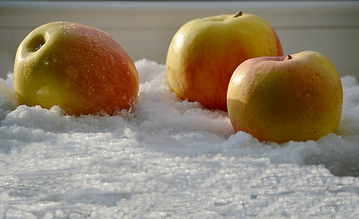 Яблоки в снегу - Валерий Лазарев