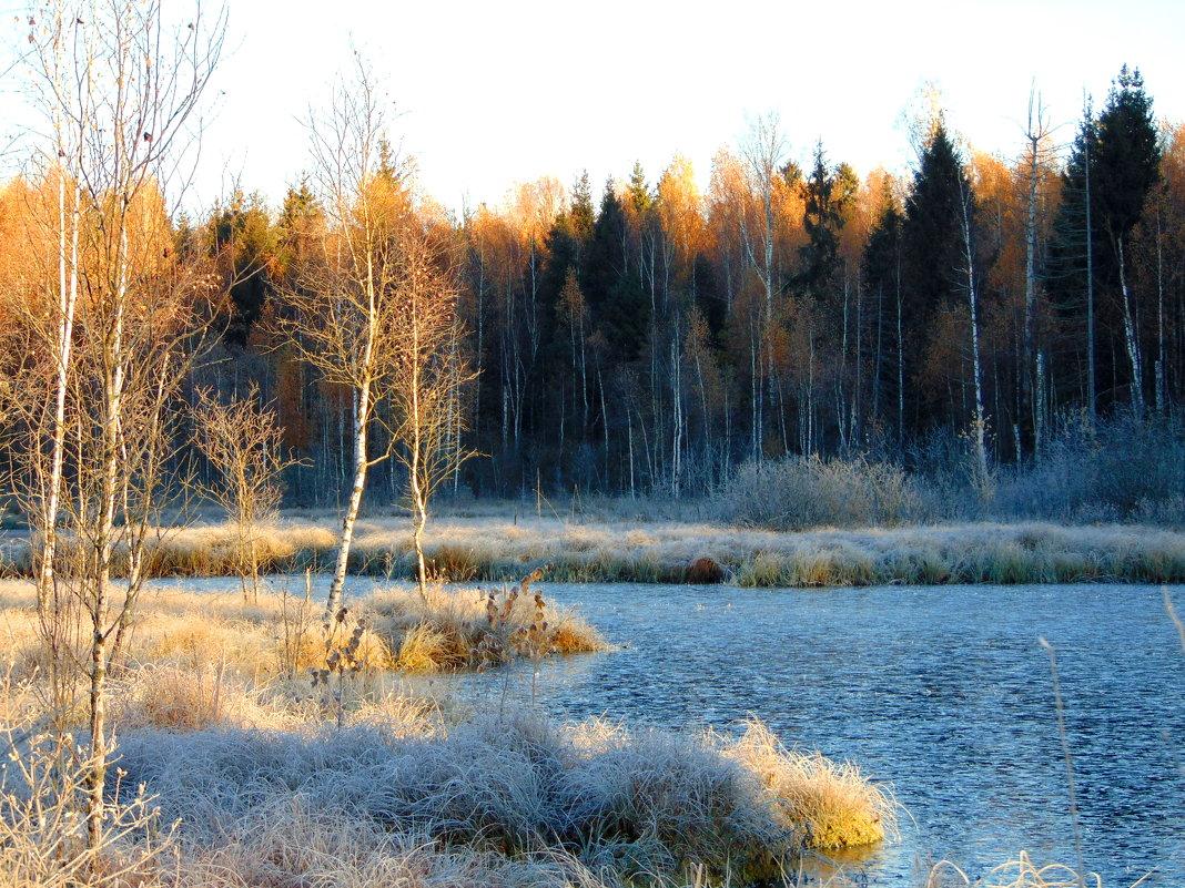Раннее морозное утро - Anna P