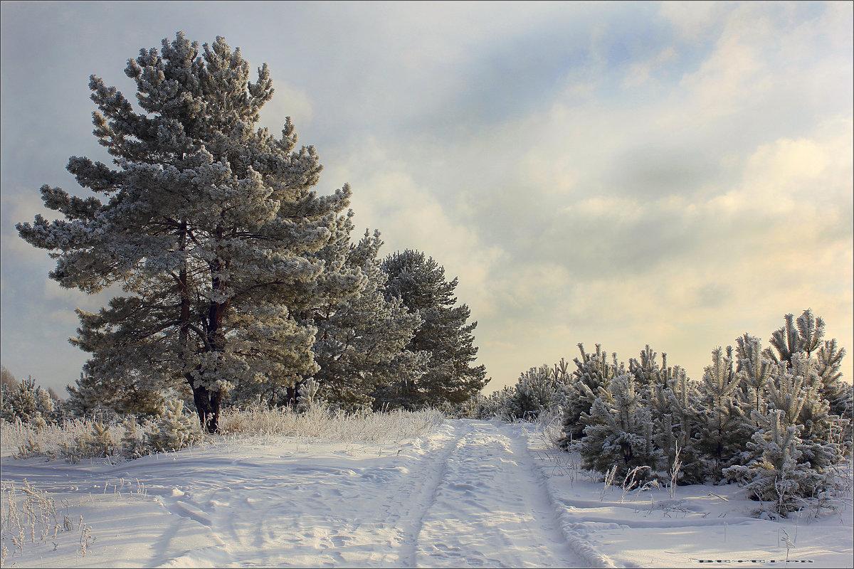 Зимний пейзаж №4 - Алексей Макшаков
