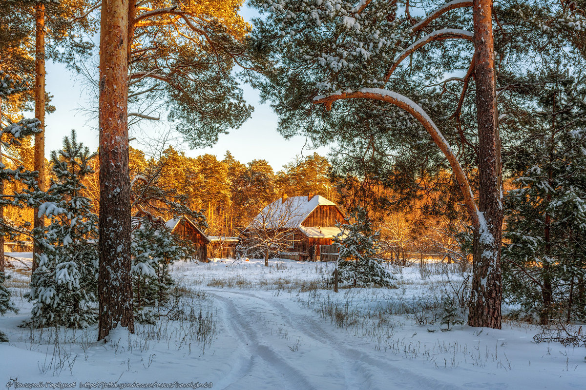 Зимняя сказка - Валерий Горбунов