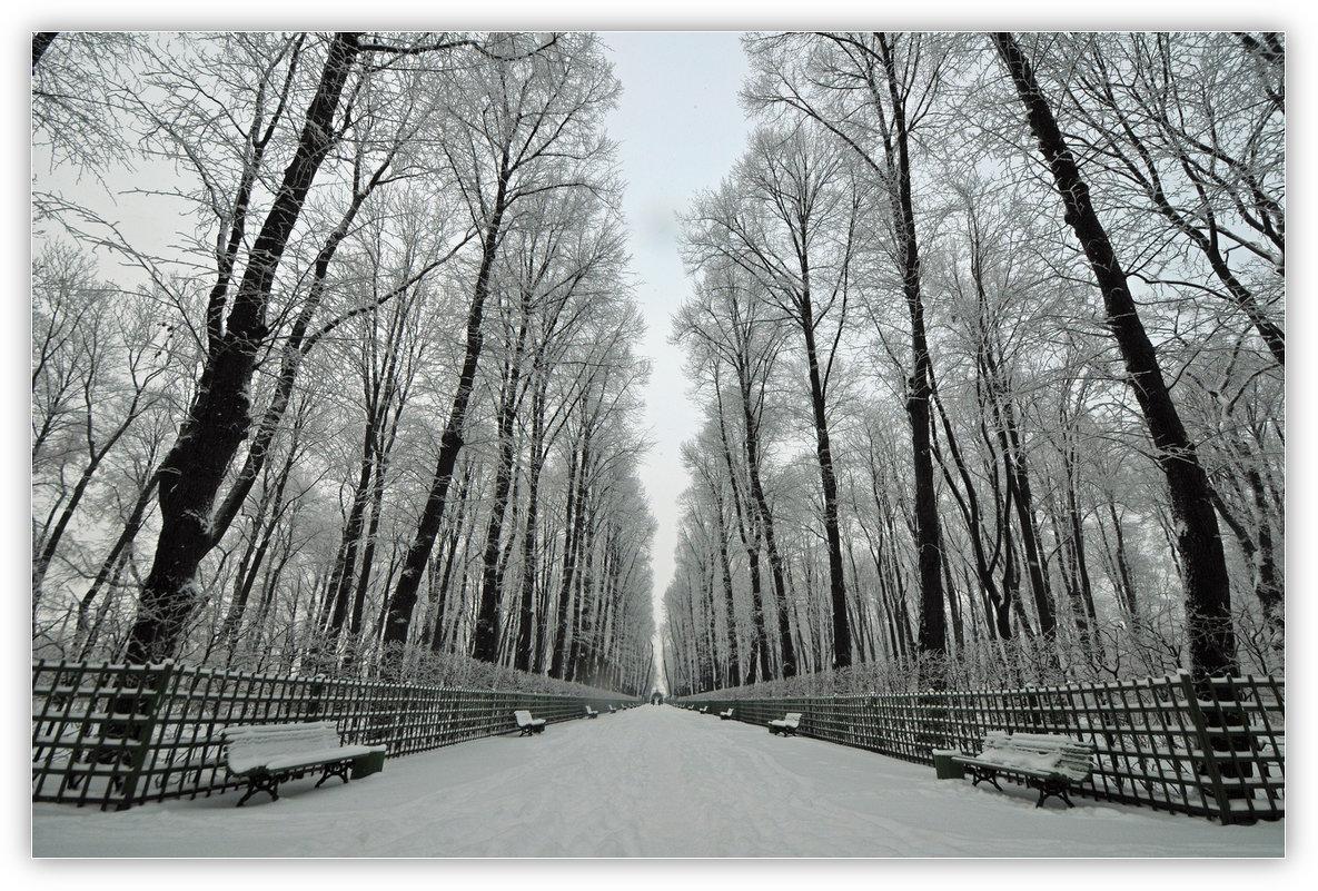 На память о зиме... - tipchik