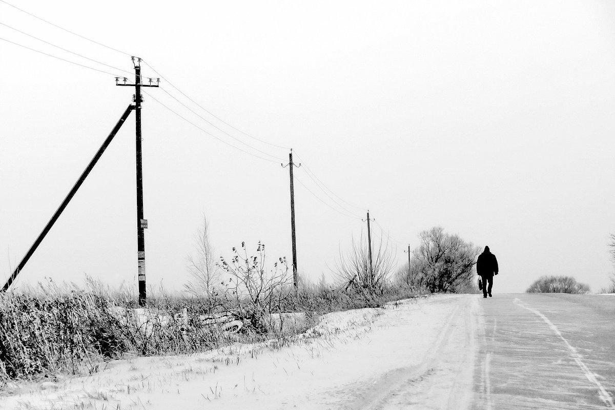 Дорога домой! - Владимир Шошин