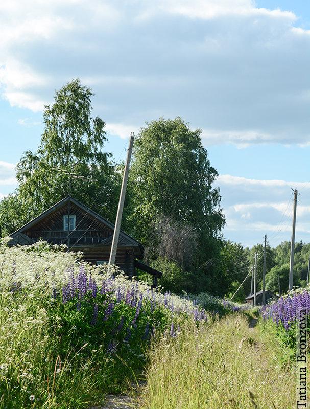 Деревня - Татьяна Бронзова