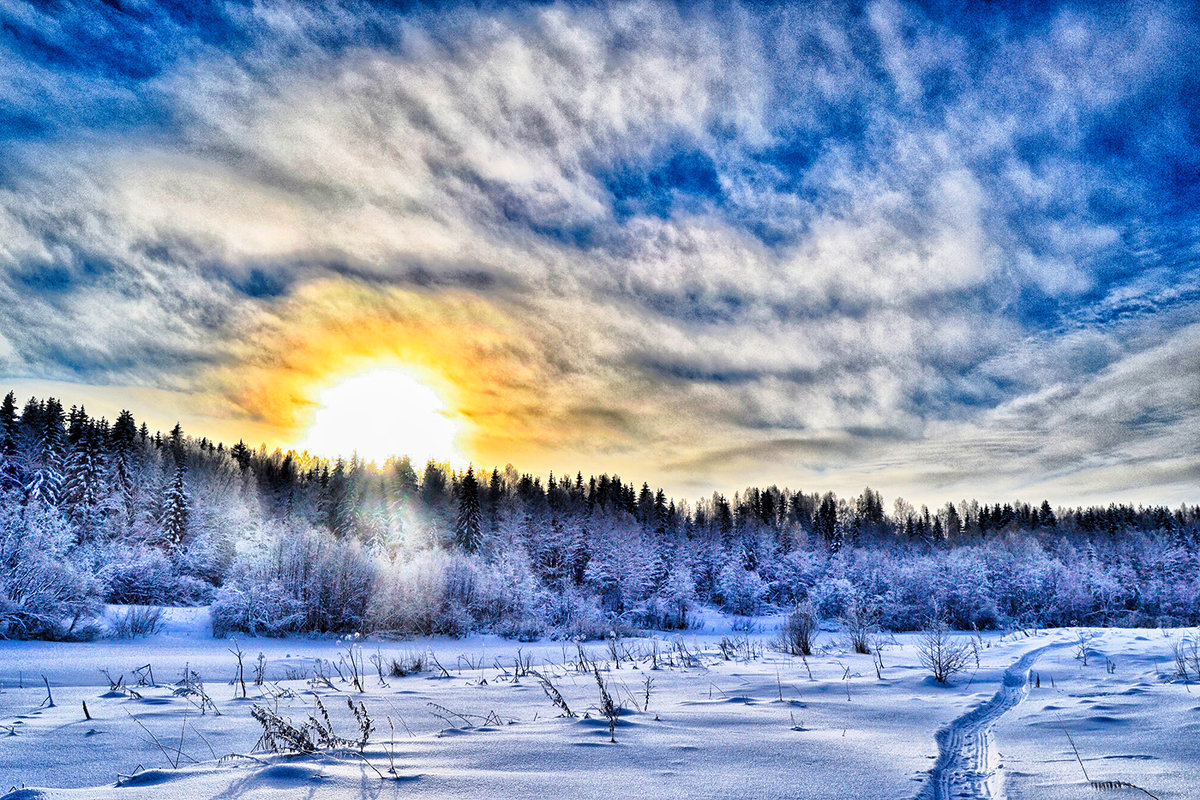 зимний день - Александр Преображенский