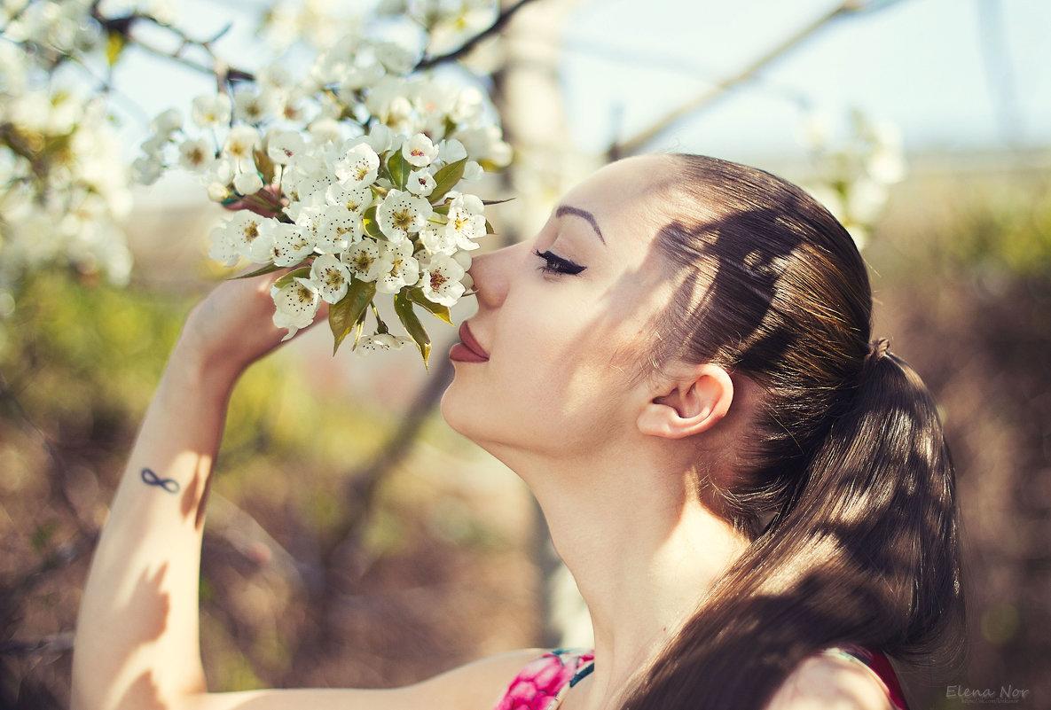 Аромат весны - Елена Нор