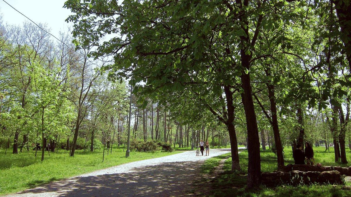 Солнечная прогулка - Людмила