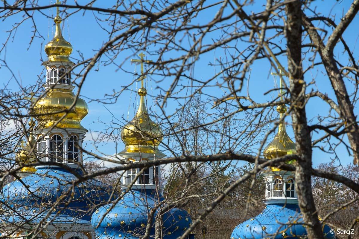 Золото на голубом - Сергей Залаутдинов