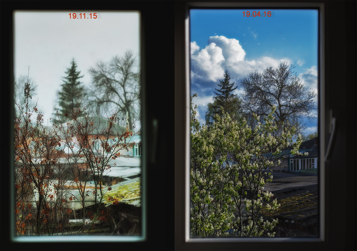 Фото с разницей в пять месяцев - Сергей