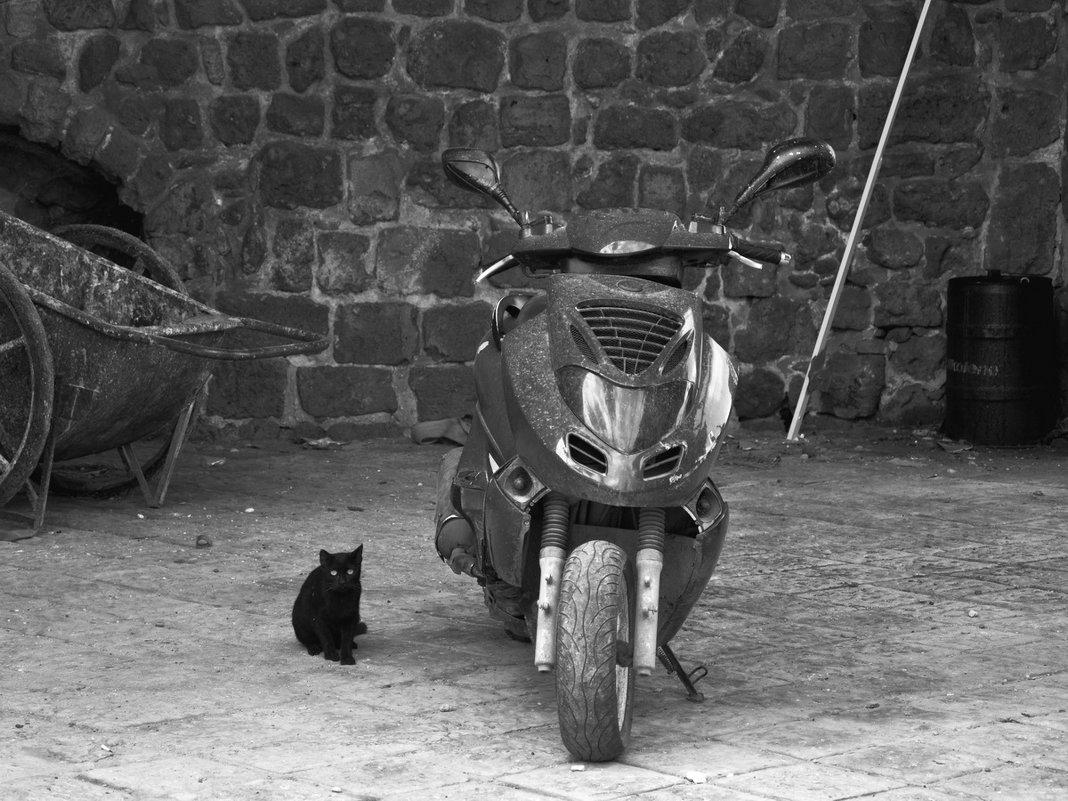 Я и мой мотоцикл - Виталий К