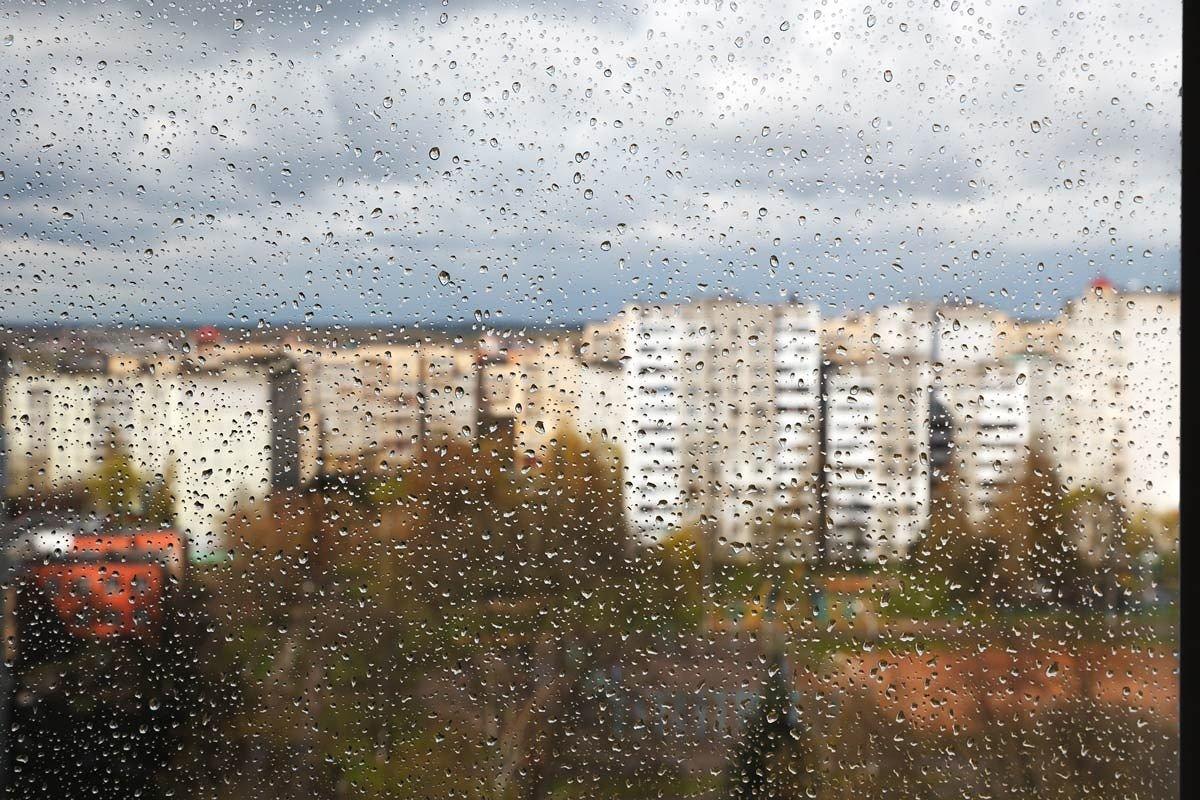 После дождя... - Александр Манько