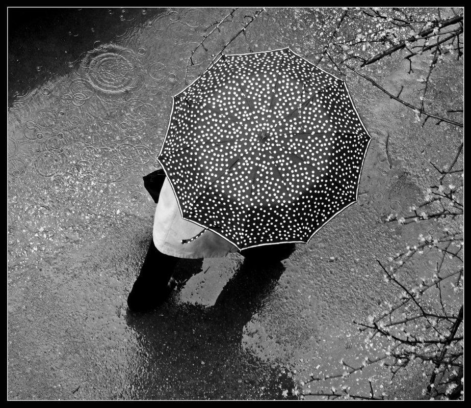 Про зонты.... - павел Труханов