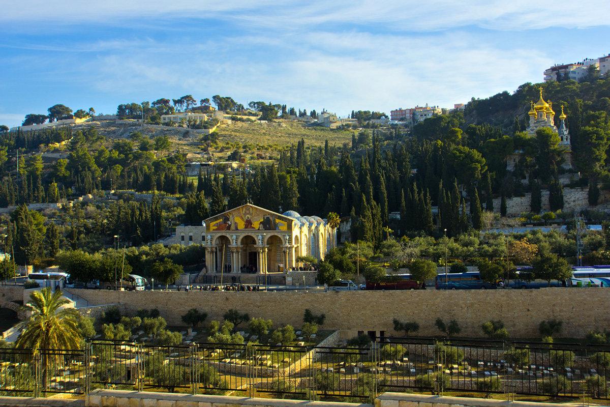 Иерусалим. Вид на Масличную гору и Гефсиманский сад. - Игорь Герман