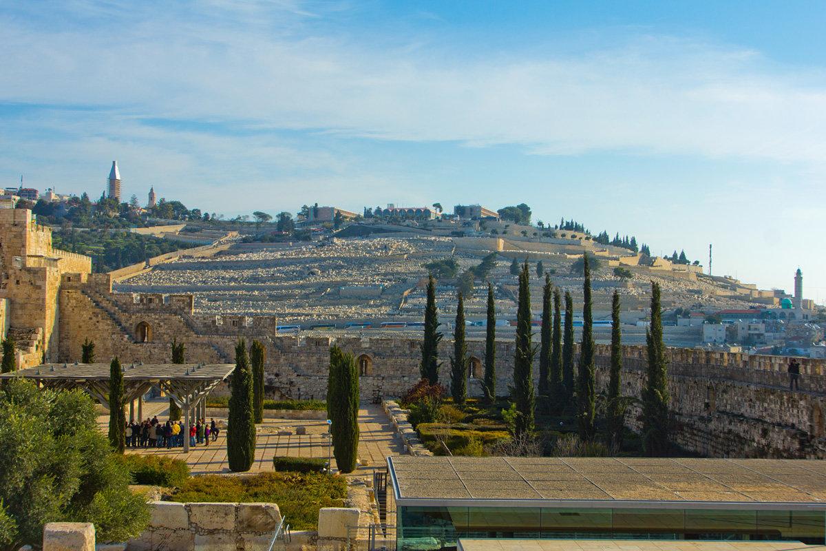 Иерусалим. Вид из Старого Города на Масличную гору. - Игорь Герман