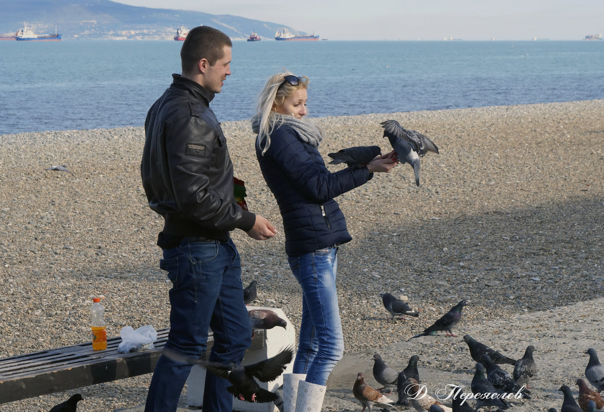 У моря с голубями - Дмитрий Переяслов