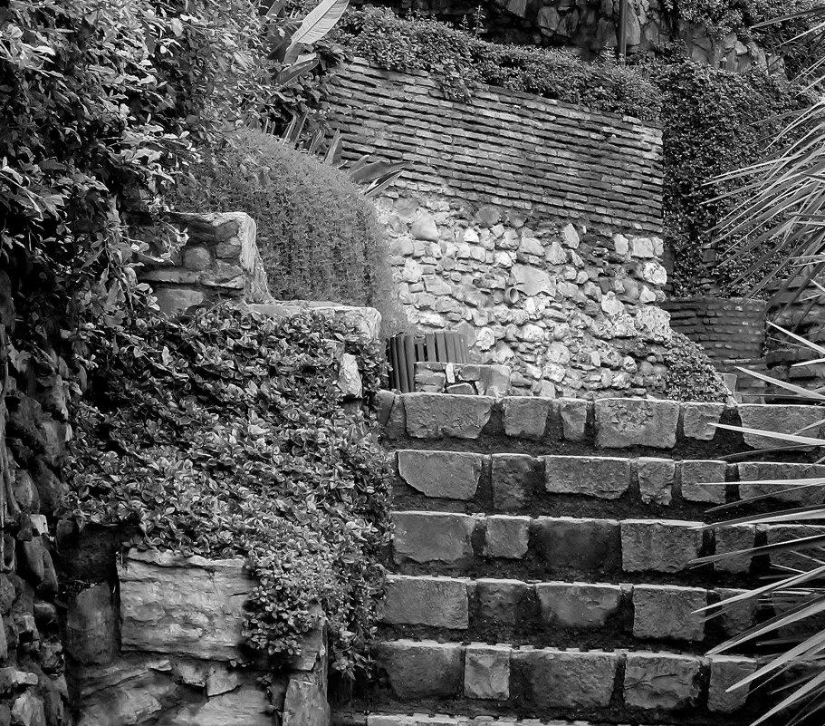 Есть привлекательность своя в садах старинных,крутые лесенки и камни вековые... - Vladimir Kolesnikov Aevik