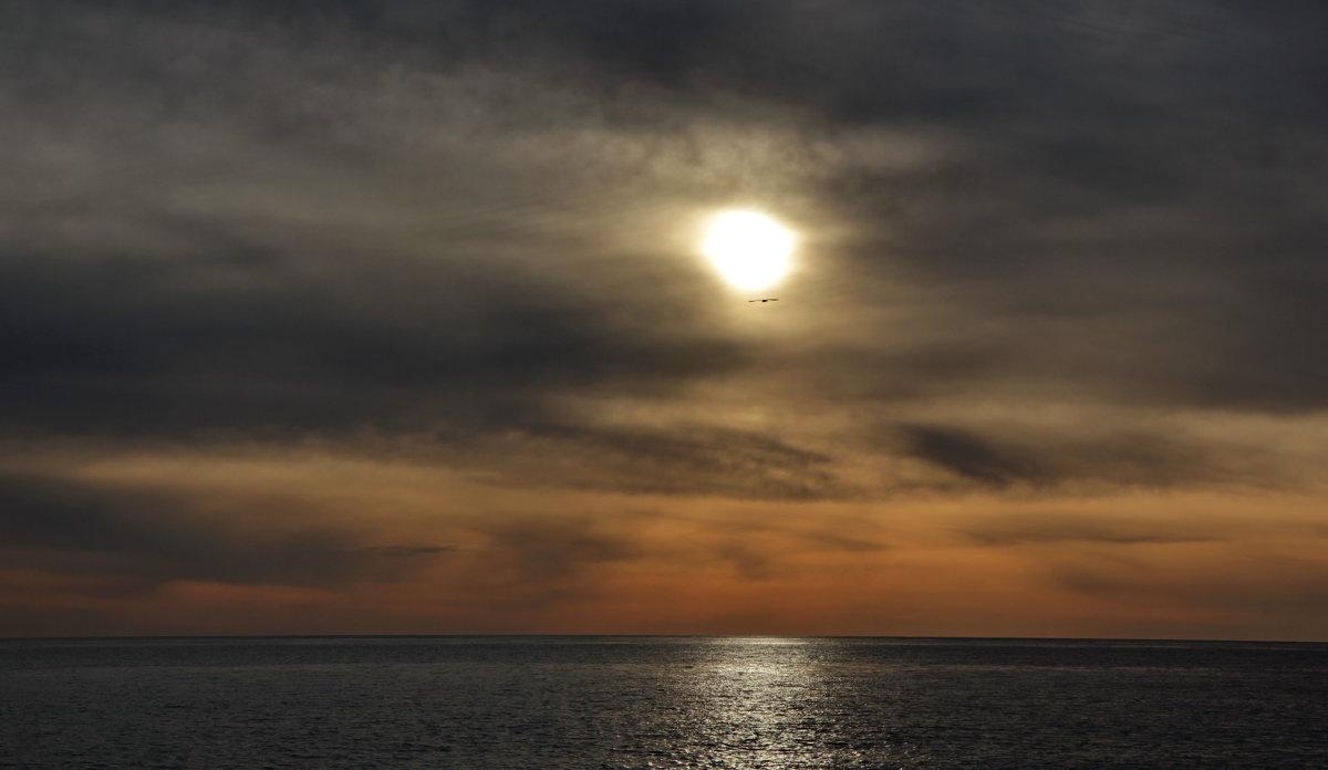 Когда на море закат... - Виолетта