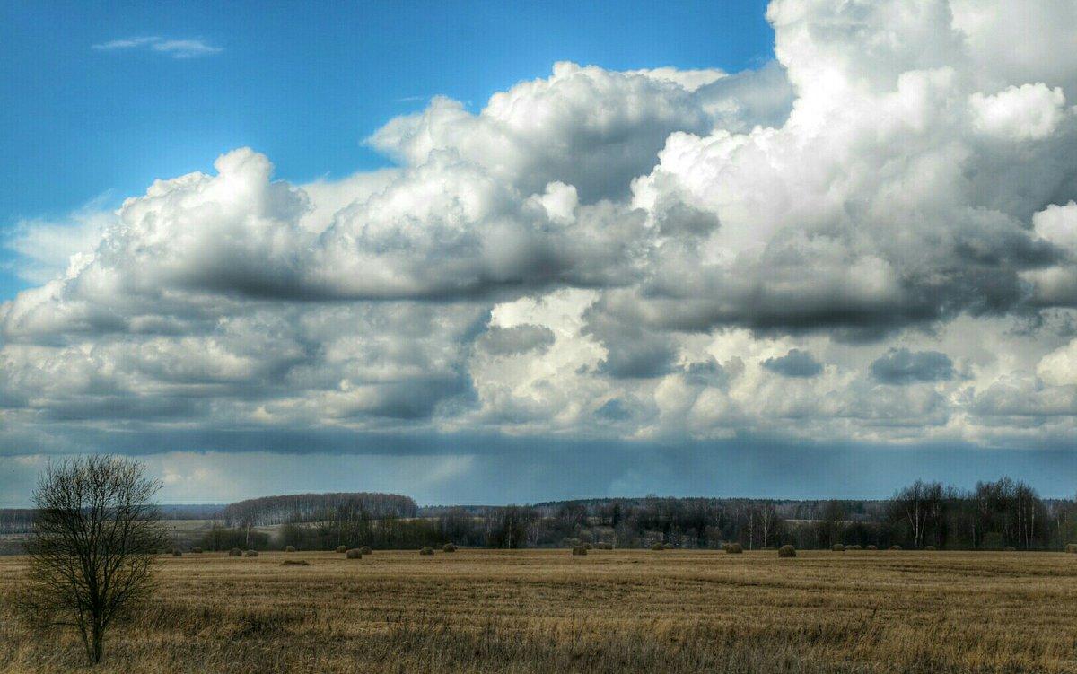 Тяжелые облака над  полем - Милешкин Владимир Алексеевич
