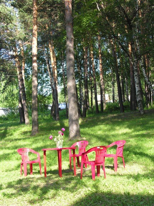 Деревня Журавлево. Кемеровская область - Edward Metlinov