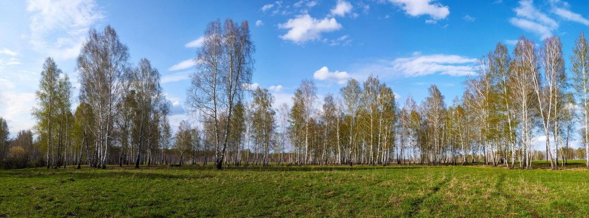 Весна - Николай Мальцев