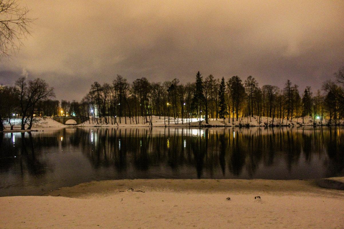 Ночной парк - Алёнка Шапран