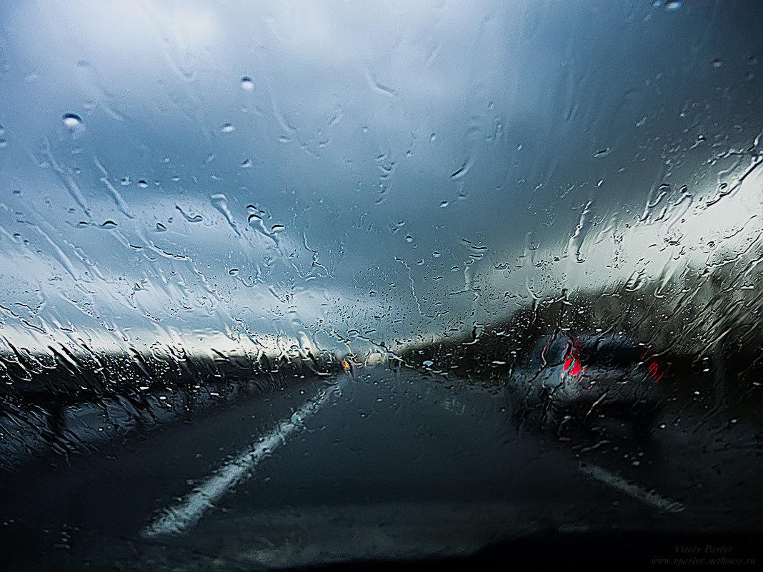Дождь в дорогу - добрая примета - Виталий Павлов