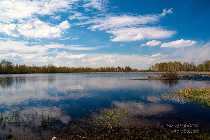 Отражения 2 - Виталий Федотов