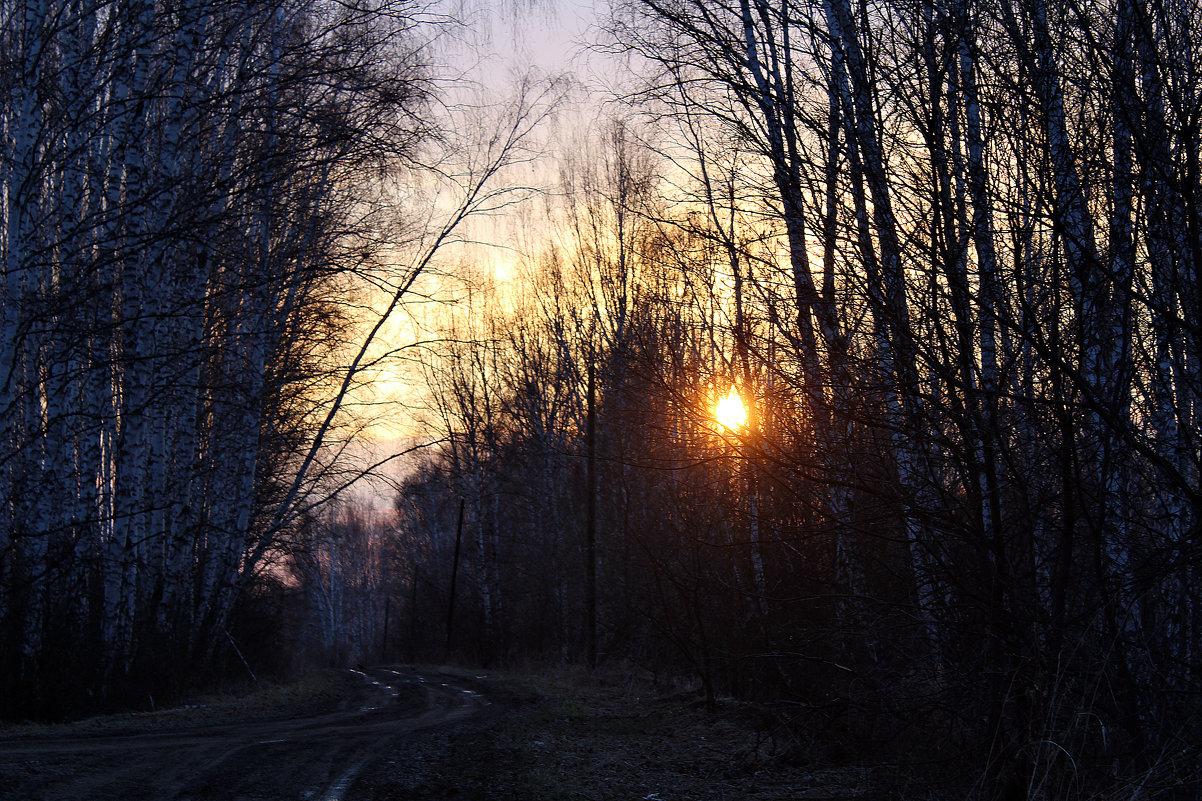 29 апреля - Ксения Малкова