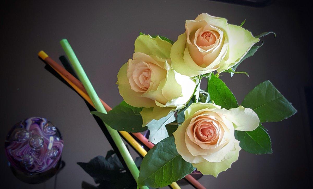 Розы в интерьере - Ирина