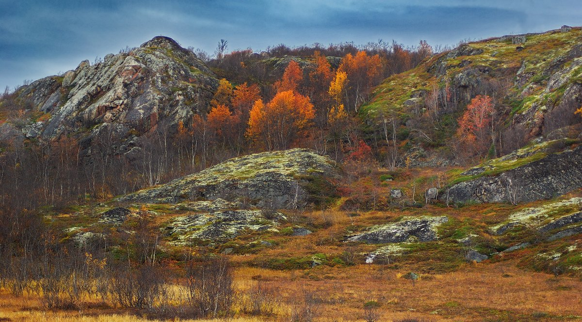 Осеннее буйство северных красок! - kolin marsh