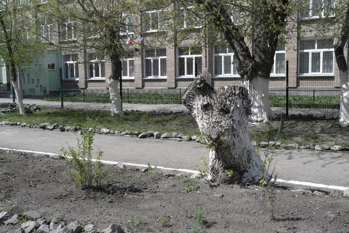 Грустный щенок - Сергей Николаевич
