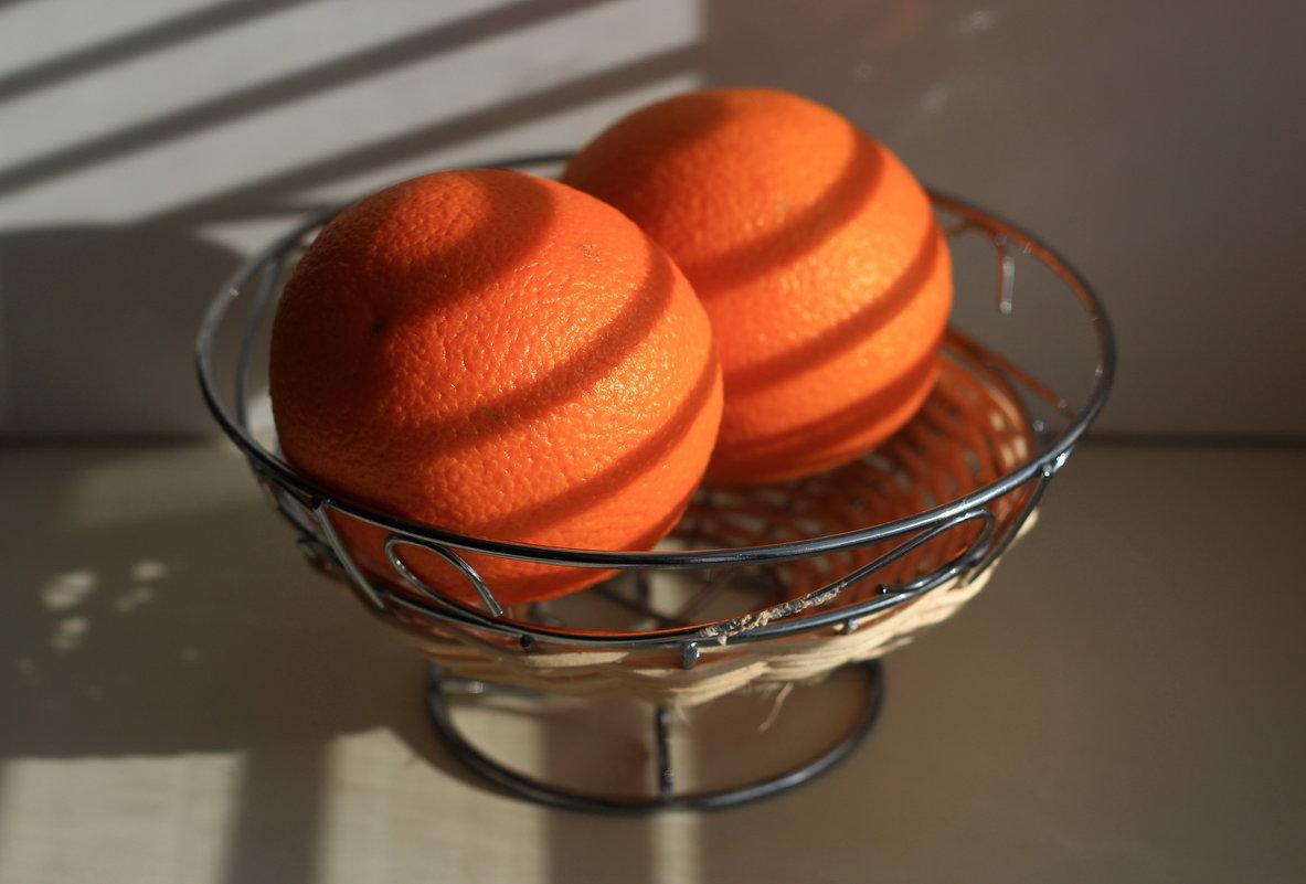 Апельсины - Николай Котко